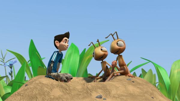Zack freundet sich mit den nicht besonders klugen Ameisen an. | Rechte: KiKA/One Animation PTE LTD.
