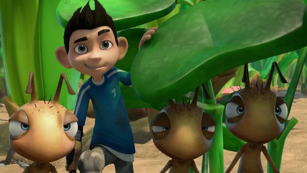 Die Ameisen und Zak beobachten Gramps und Willow. | Rechte: KiKA/One Animation PTE LTD.