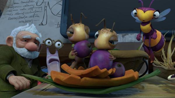 Die Ameisen-Babys stürzen sich auf das Essen. Gramps, Syd und Willow sind schockiert.   Rechte: KiKA/One Animation PTE LTD.