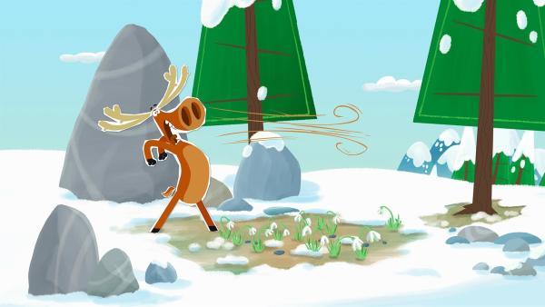 Elch Hubert steht ganz kurz vor einem mächtigen Nieser. Haben etwa die Schneeglöckchen auf dem Boden damit zu tun? | Rechte: ZDF/JEP Animation