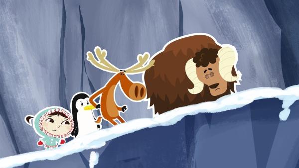 Bei der Rückreise zur Tundra über die Berge zeigt sich, dass der junge Moschusochse Willy ein ziemlich schwieriger Begleiter ist. Zu seiner allgemein großen Ängstlichkeit kommt nun auch noch dazu, dass er gar nicht schwindelfrei ist. | Rechte: ZDF und JEP-Animation GmbH