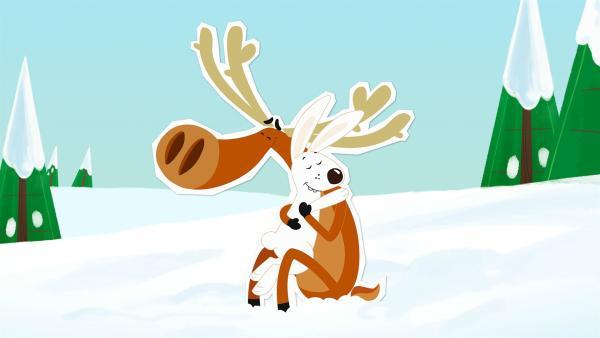 Elch Hubert nimmt an, dass er am Nordpol sehr beliebt ist. Er hat gewettet, dass er in kurzer Zeit von fünf Tieren geknuddelt wird. Beim Schneehasen Siggi klappt das auch sofort, aber dann droht die Wette zu scheitern. | Rechte: ZDF und JEP-Animation GmbH