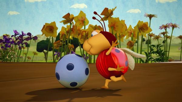 Käfer Lu will unbedingt Fußball spielen. Aber der Ball ist ganz schön riesig. Ob das gut geht?   Rechte: ZDF/Scopas Medien AG