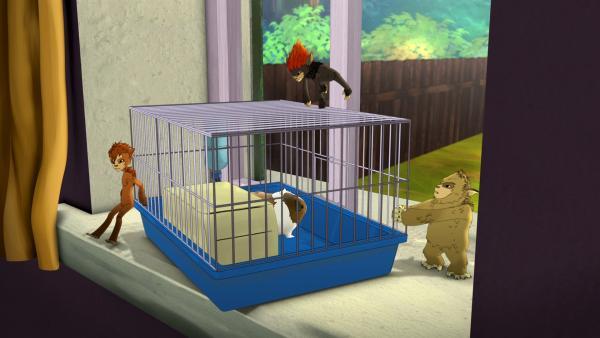 Die Kobolde auf Meerschwein-Klau | Rechte: ZDF/Flying Bark Productions