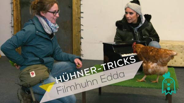 Jess macht Tricks mit Hühnern | Rechte: KiKA