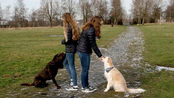 Die Freundinnen Svea (l.) und Frederike (r.) mit ihren Trickdogs Connor und Nala. | Rechte: KiKA/Sabine Krätzschmar