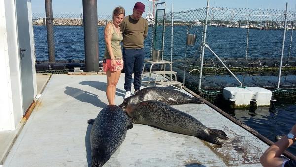 Ben besucht das Marine Science Center in Rostock. Neun Seehunde, zwei Seelöwen und ein Seebär leben dort. | Rechte: KiKA/Stephanie Paersch