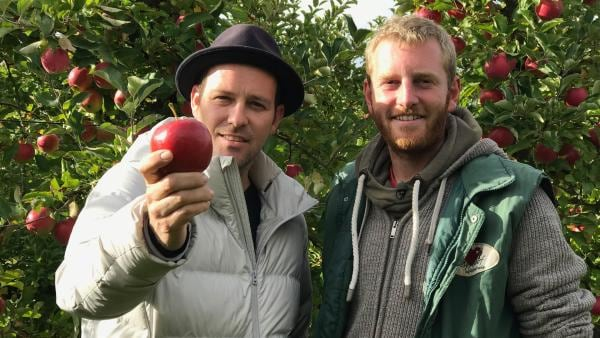 Ben macht sein erstes Praktikum auf einem Apfelhof. | Rechte: KiKA/Rozhyar Zolfaghari