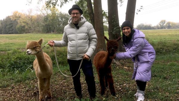 Ben und Jess gehen mit zwei Alpakas spazieren. | Rechte: KiKA/Cori Hinze