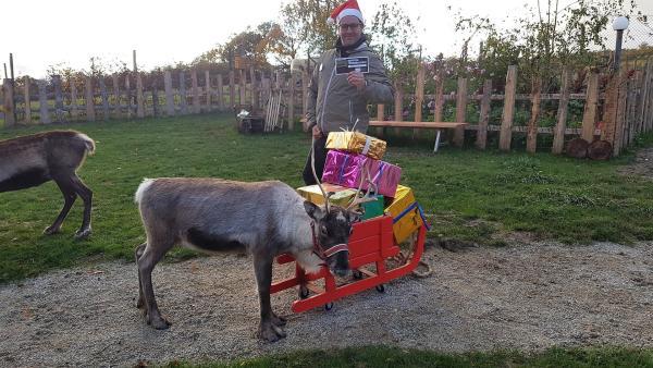 Ben besucht eine Rentierfarm und macht sich schlau: Wie werden die Rentiere fit für die kommende Weihnachtssaison?   Rechte: KiKA/Anna Leistner