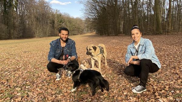 Jess trifft den Hundespezialisten Masih Samin und seine vierpfotigen Freunde in Köln. | Rechte: KiKA/Nicolette Maurer