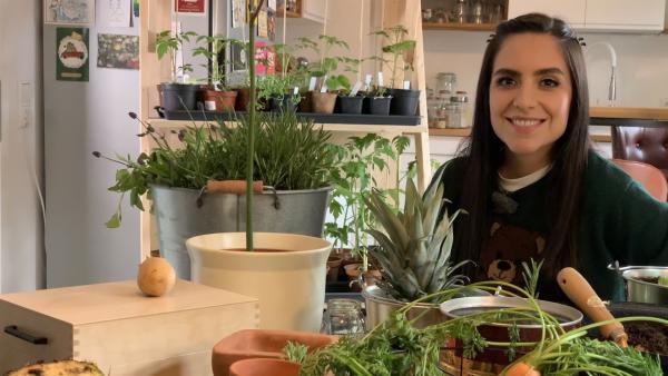 Jess testet den Trend des Regrowings und Hobbygärtnerns: Kann man wirklich Salat, Avocados und Zwiebeln aus Gemüseabfällen selber ziehen? | Rechte: KiKA/Alex Huth