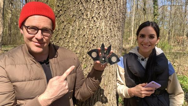 Jess und Ben erleben ein Abenteuer direkt vor der Haustür: Sie machen Geocaching. | Rechte: KiKA