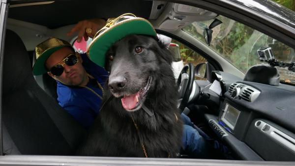 KiKA LIVE-Moderator Ben mit Hund Otto | Rechte: KiKA/Stefanie Jung