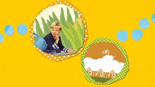 Kikaninchen und Freunde: Von Dinos und Schafen | Rechte: KiKA