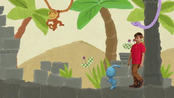 Im Dschungel kann man viel erleben | Rechte: KiKA