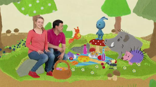 Picknick und Post im Wald | Rechte: KiKA