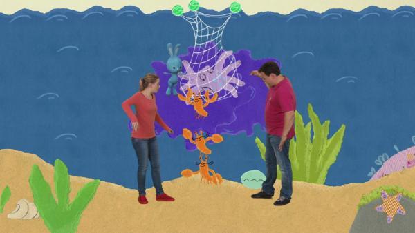 Rettung eines Tintenfischs | Rechte: KiKA