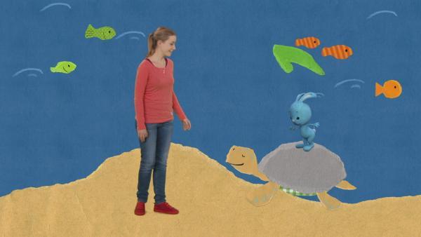 Unterwasser-Schnipselwelt | Rechte: KiKA