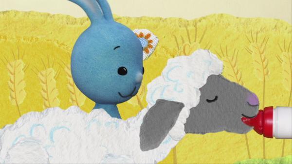 Tierkinder auf dem Bauernhof | Rechte: KiKA
