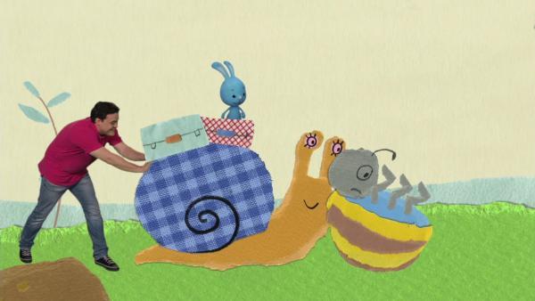 Rettung für einen hilflosen Käfer | Rechte: KiKA