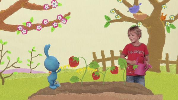 Im Obstgarten | Rechte: KiKA