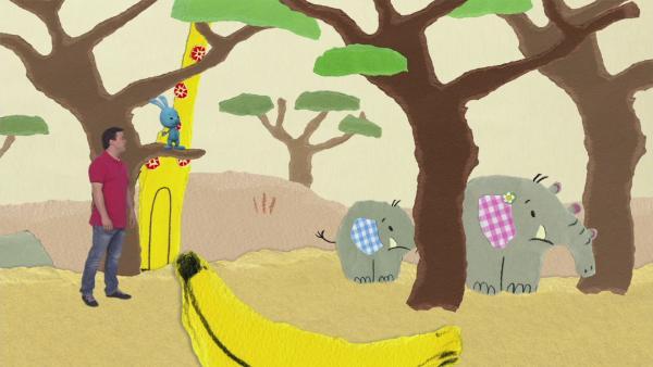 Besuch beim Elefanten | Rechte: KiKA