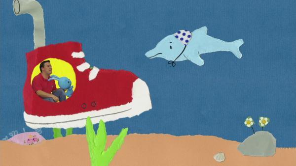 Ein Freund für den Delfin | Rechte: KiKA