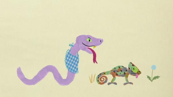 Das Chamäleon und die Schlange | Rechte: KiKA