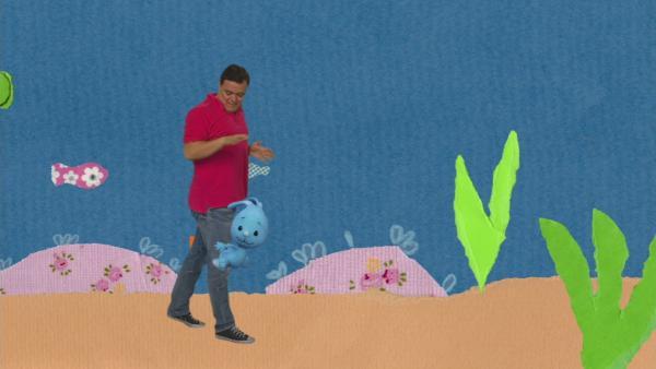 Eine Meeresschildkröte ohne Panzer | Rechte: KiKA