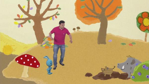 Eine kleine Wildschweinfamilie im Herbstwald | Rechte: KiKA