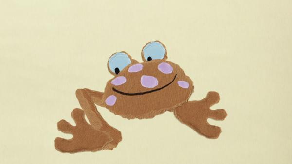 Der Frosch braucht eine Brille | Rechte: KiKA