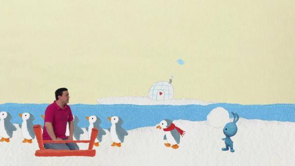 Ein Pinguin mit kalten Füßen | Rechte: KiKA