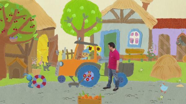 Neues Stroh für die Schweinebabies | Rechte: KIKA