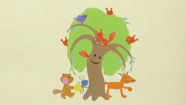 Trauerweide Eichhörnchen | Rechte: KiKA