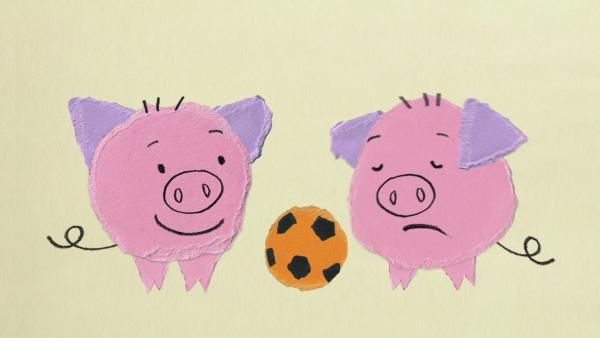 Ein Schwein mit schlechter Laune | Rechte: KiKA