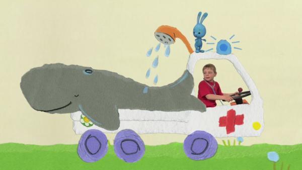 Erste Hilfe für den Wal | Rechte: KiKA