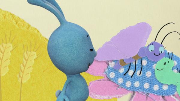 Aus einer Raupe wird ein Schmetterling | Rechte: KiKA