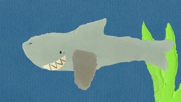 Der Hai braucht einen Zahnstocher | Rechte: KiKA