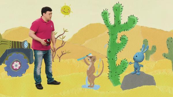 Eine Wüstenfahrt mit Wasser aus einem Kaktus | Rechte: KiKA