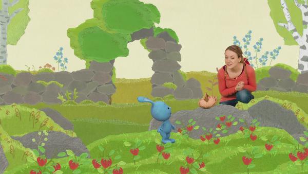 Kikaninchen und Anni haben eine Wunderminute bei einem Vogelkonzert | Rechte: KiKA