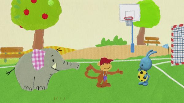 Der Ball landet im Apfelbaum | Rechte: KiKA