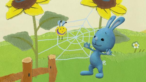 Ein Bienchen verfängt sich im Spinnennetz | Rechte: KiKA