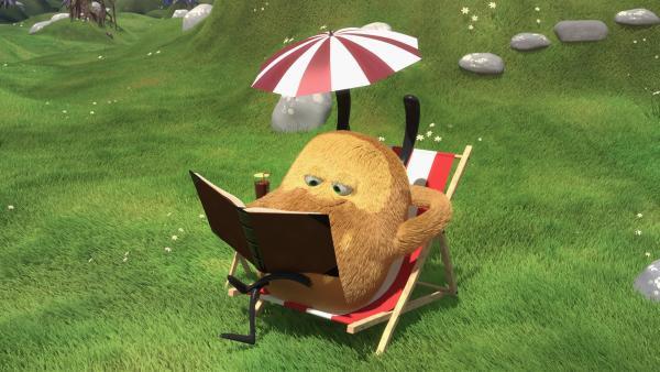 Bei so schönem Wetter möchte Kiwi gern in seinem Liegestuhl liegen und lesen. | Rechte: NDR/Copenhagen Bombay