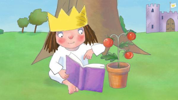 Die kleine Prinzessin lernt, wie Tomatenpflanzen entstehen. | Rechte: ZDF/Illuminated Film Ltd.