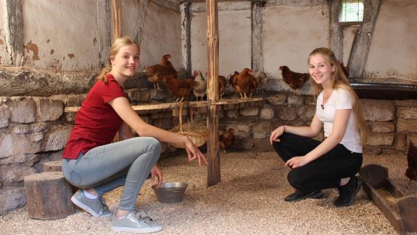 Was ist eine typische Zutat für Waffeln und Kuchen? Genau, Eier. Regina (links) und Celine (rechts) müssen sich diese frisch aus dem Hühnerstall holen. | Rechte: ZDF/Oliver Landgraf