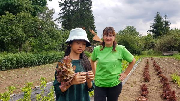 Betriebsleiterin Ines Küter begleitet Nhung auf ihrer Spurensuche auf einem Salatfeld in Brandenburg. | Rechte: rbb/Stefanie Fleischmann