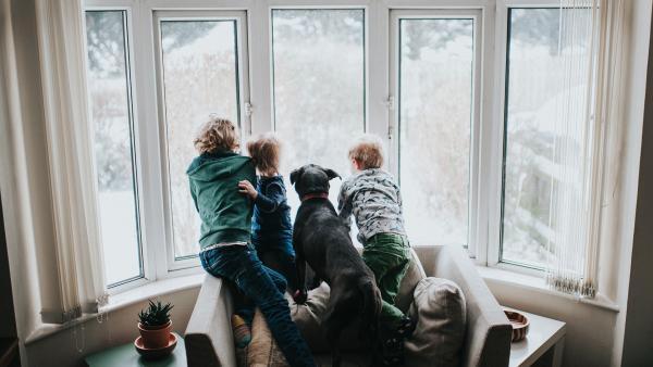 Geschwister kann man sich nicht aussuchen. | Rechte: KiKA/Getty Images/Catherine Falls