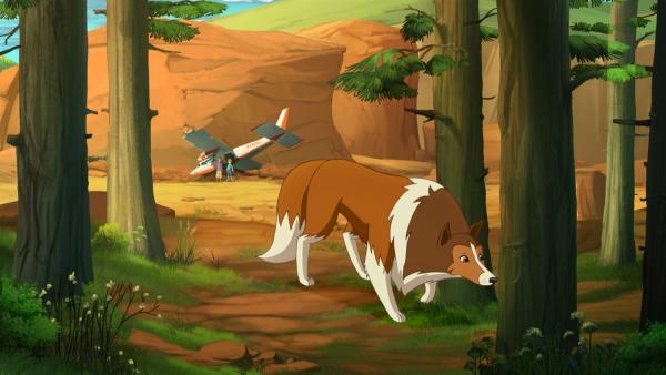 Lassie versucht die Spur von Zoes verschwundener Tante Kim zu finden. | Rechte: ZDF/Classic Media/DC Entertainment/Superprod