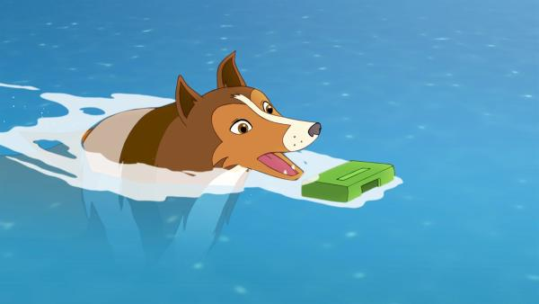 Lassie ist ins Wasser gesprungen, um das Päckchen zu retten, in dem das wichtige Gegengift für Mrs. Lee ist. | Rechte: ZDF/Classic Media/DC Entertainment/Superprod